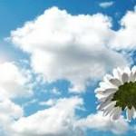 florbranca_e_os_ceus